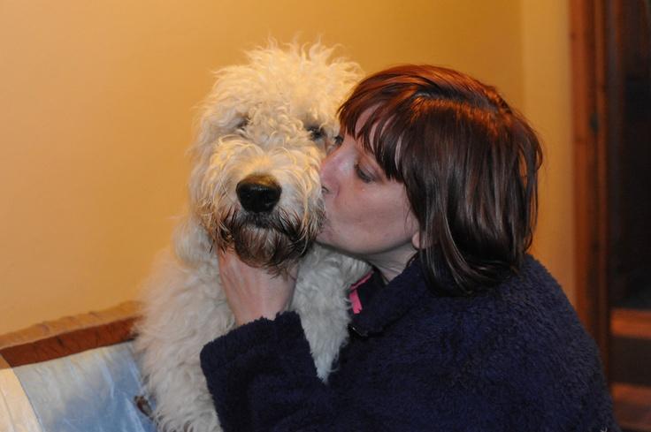 Pups with mum