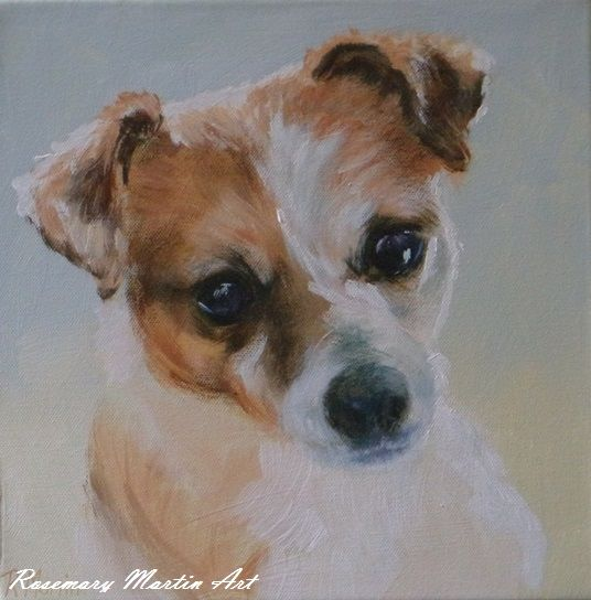 Demi the Jack Russell Acrylic on stretched canvas 30cm x 30cm