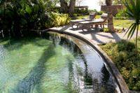 Construire une piscine naturelle - Fiche pratique