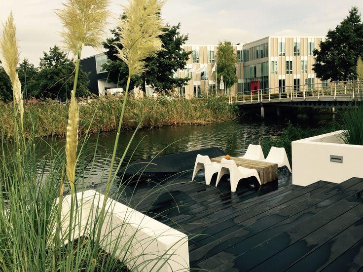 In een bestaande tuin in Leidsche Rijn hebben we een grote vlonderpartij aangelegd van wpc composiet. Hoogte verschillen in de tuin zijn opgevangen met polyester wanden met verlichting erin. Het resultaat is een goede lounge sfeer en helemaal onderhoudsvrij!