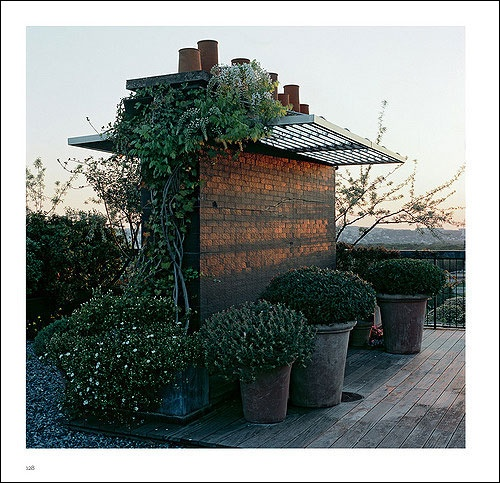 Camille Muller (paysagiste)  sur un toit parisien