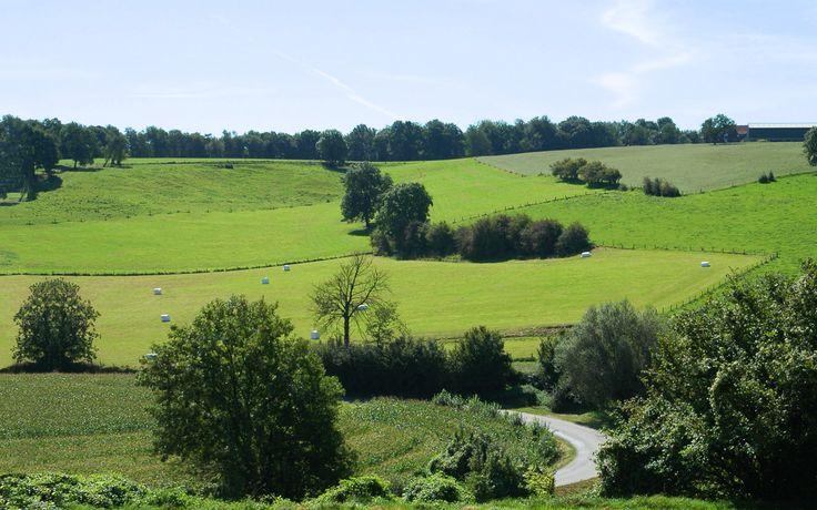 limburgs-landschap.jpg 1.280×800 pixels