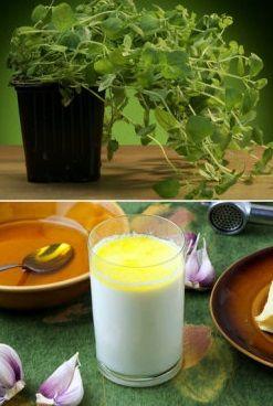 Zrób własne naturalne leki na przeziębienie - http://tvnmeteoactive.tvn24.pl/inne-aktywnosci,3019/zrob-wlasne-naturalne-leki-na-przeziebienie,187667,0.html