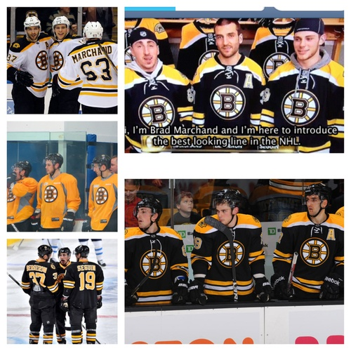 10+ Images About Bruins On Pinterest