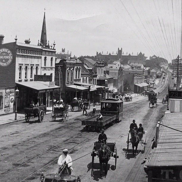 George St West (Broadway) circa 1890 - that's Sydney University in the background.