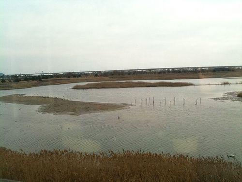 을숙도 :: 갈대밭과 수초가 무성하고 어패류가 풍부한 철새들의 보금자리