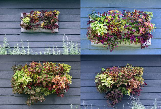 diy felt wall planterDiy Gardens, Gardens Ideas, Diy Felt, Backyards Green, Outdoor, Wall Pocket, Diy Hanging Wall Planters, Felt Wall, Diy Wall Planters
