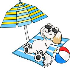 Relax and enjoy a dog friendly holiday at Hazelwood Holiday Park in Devon