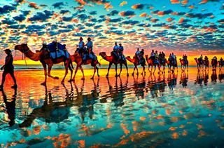 Camels at Sunset, Cable Beach, Australia
