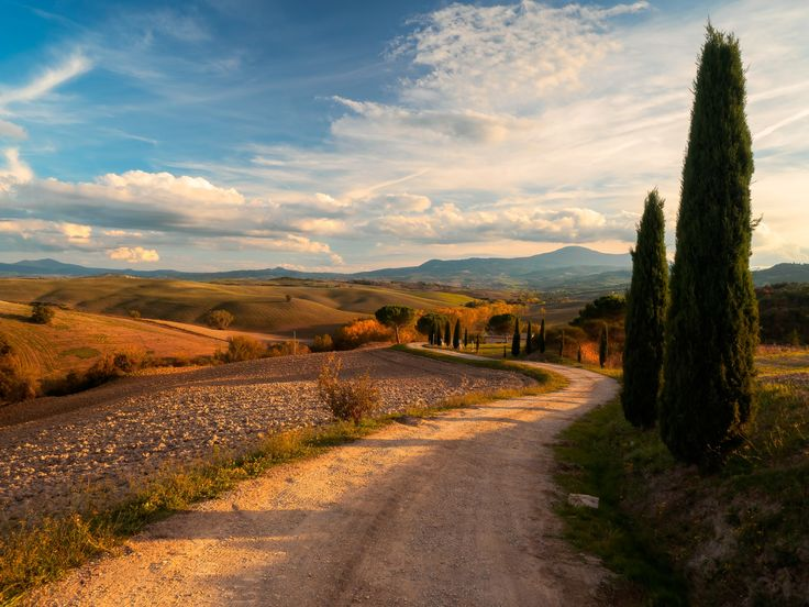 Val d'Orcia in Autumn - OLYMPUS DIGITAL CAMERA