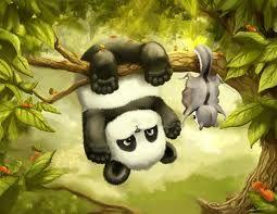 Pandas and sugar glider