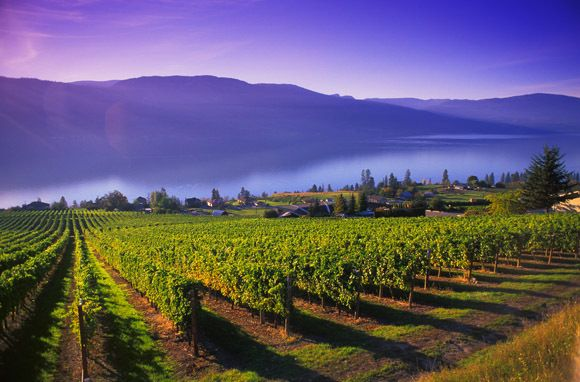 Want to experience the romance of wine country but go a bit off the beaten path? Try Kelowna in British Columbia