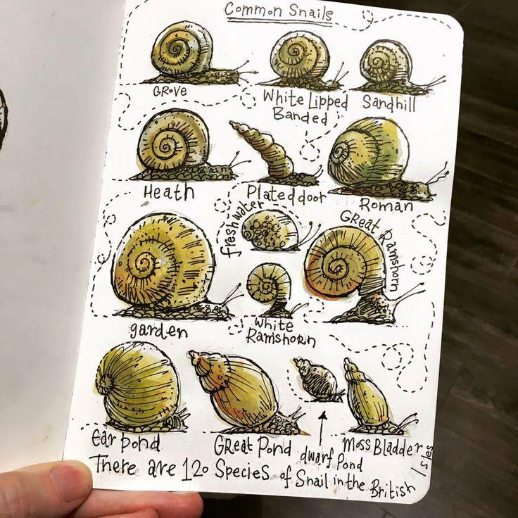 Sketchbook 2016 on Behance
