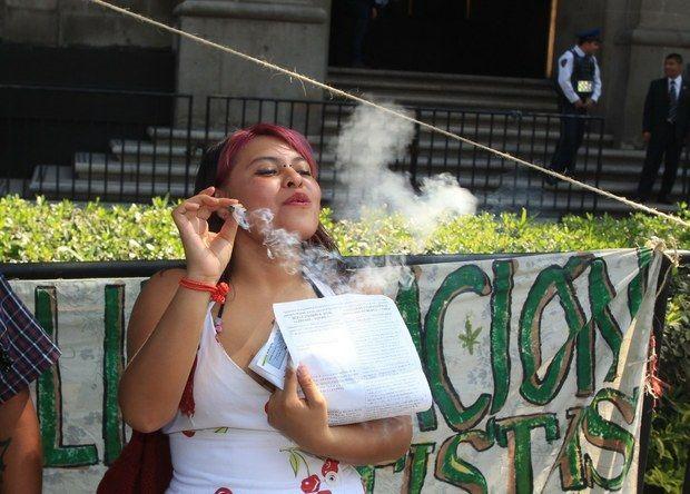 """En una decisión inédita e histórica, la primera sala de la Suprema Corte de Justicia de la Nación (#SCJN) validó el uso """"lúdico"""" de la #marihuana, su siembra y consumo para consumo personal, sin incluir su comercio, suministro o distribución."""