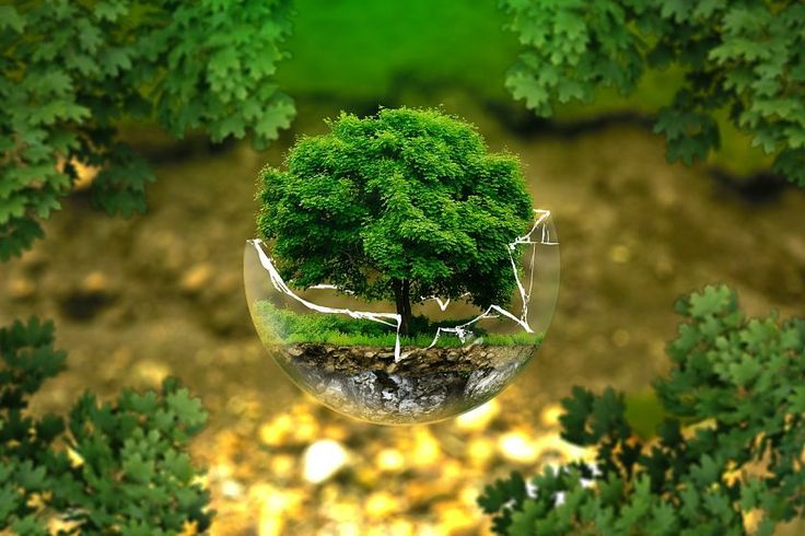 10 Productos Eco Friendly para ayudar a detener la contaminación plástica.