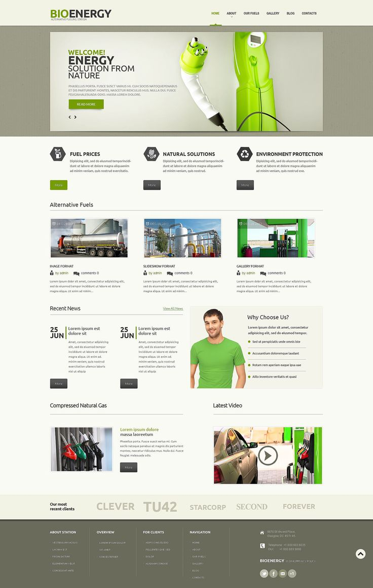 Best 12 Environmental & Clean Energy WordPress Themes (Solar, Wind and Recycling) - Biofuel (theme for WordPress) Item Picture