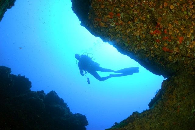 Scuba diving in Ustica