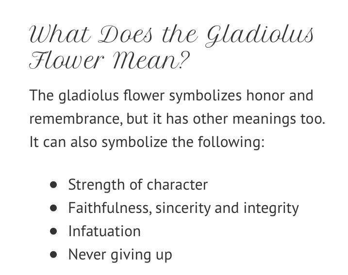 Pin By Nick Mose On Tattoo Gladiolus Flower Meaning Gladiolus Flower Meant To Be