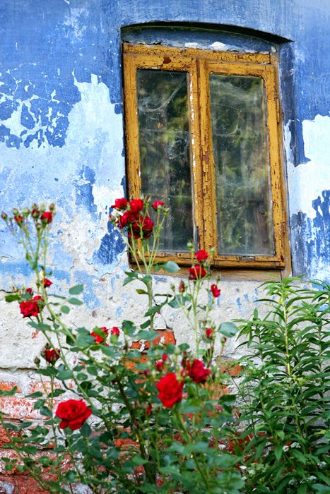 classic weathered exterior wall with blistering window frame - colors and composition are wonderful