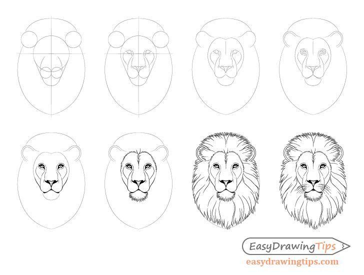 Wie Lion Face Head Schritt Fur Schritt Zu Zeichnen Easydrawingtips Easydrawingtips Schritt Zeichnen Lowe Zeichnen Lowenkopf Zeichnen Lowen Zeichnung