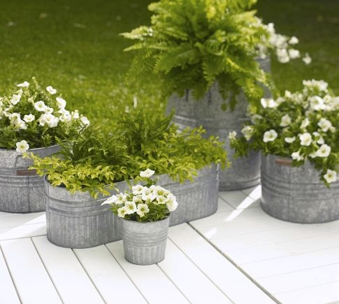Eclectic Galvanized Metal Planters. I love the idea of growing in these. Search antique, flea markets....
