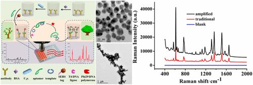 In Vitro Isothermal Nucleic Acid Amplification Assisted Surface-Enhanced Raman Spectroscopic for Ultrasensitive Detection of Vibrio…