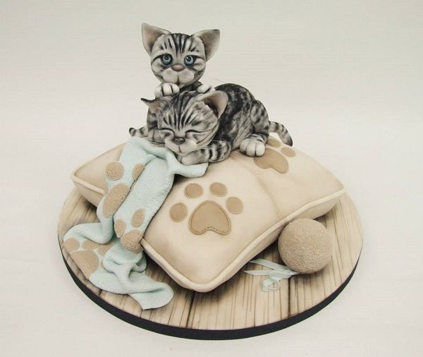 kitten cake by Emma Jayne Cake Design