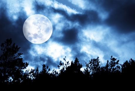 Remember the 'Supermoon' phenomenon? Explore 5 reasons why they are just another of the sky's natural wonders with Need to Know