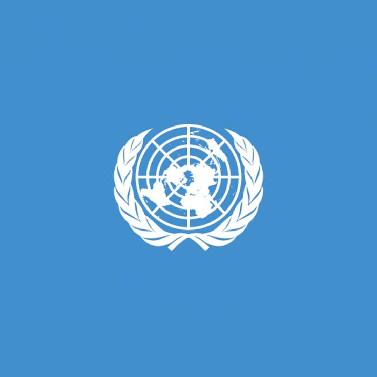 Funded United Nations Fellowship