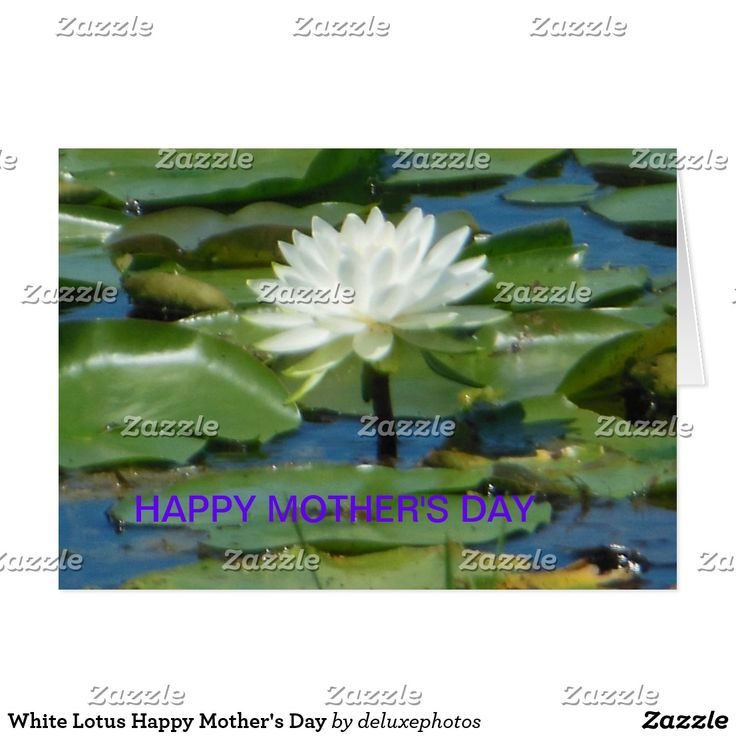 White Lotus Happy Mothers Day