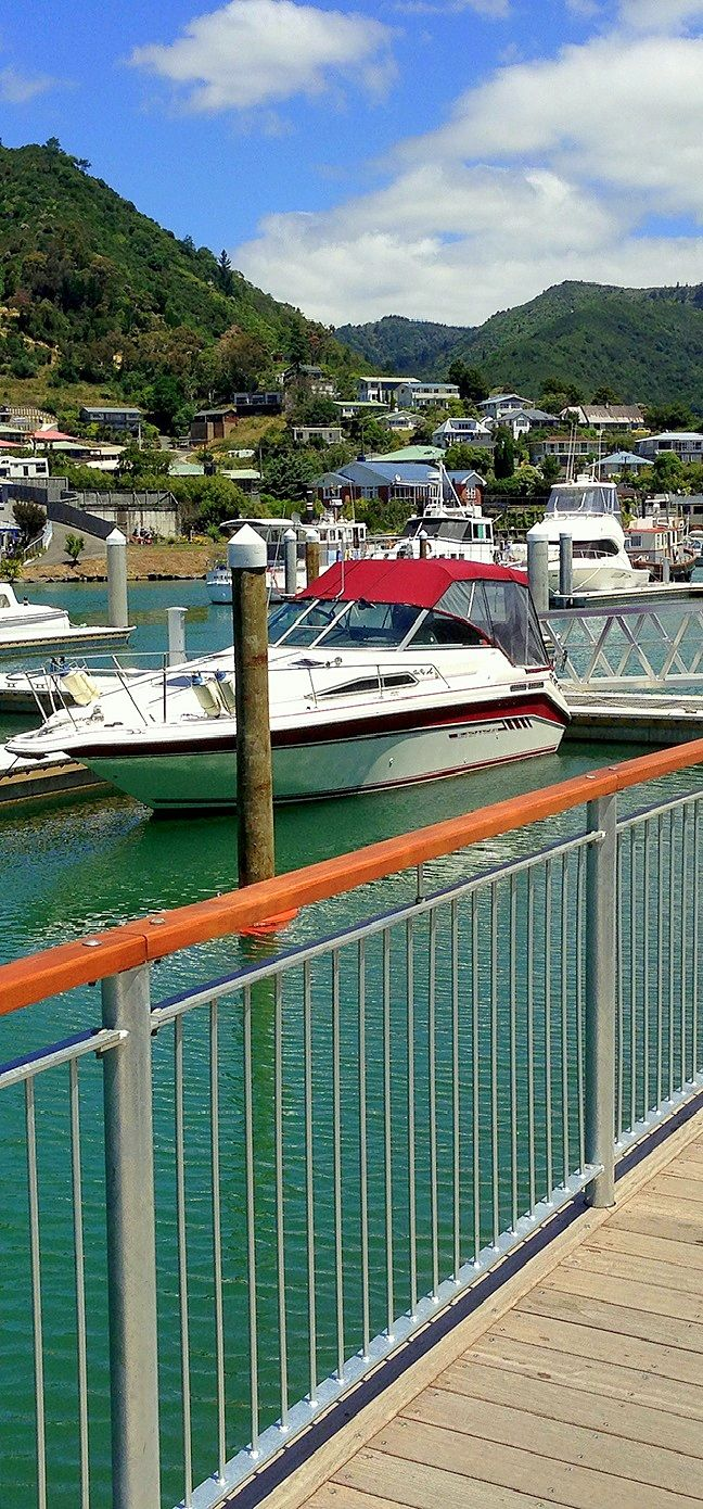 Picton Marina in New Zealand