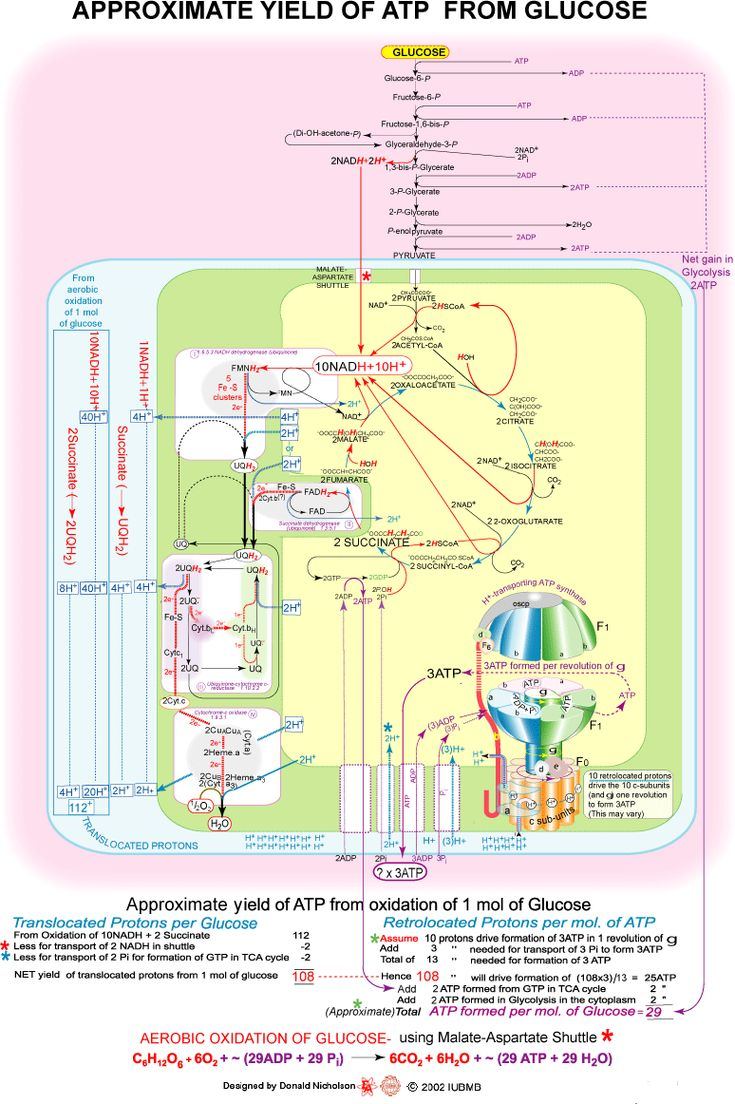 64 best Energie images on Pinterest   Knowledge, Science classroom ...