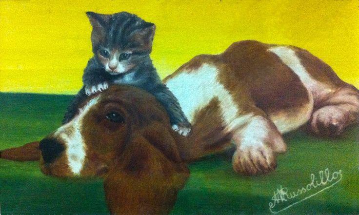 Cane e gatto, questa volta amici