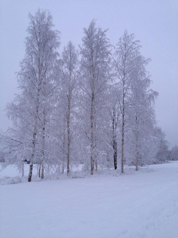 Winter, Finland