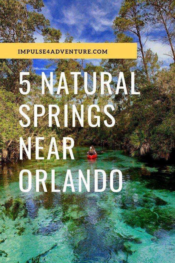 The 5 Best Natural Springs Near Orlando Impulse4adventure Florida Adventures Springs Near Orlando Florida Adventures Natural Springs In Florida