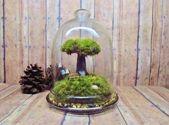 Tree of Life Terrarium Live Moss Raku Fired Tree in Bell Jar with Glow in the Dark Mushrooms- Handmade by Gypsy Raku