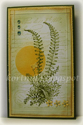 When I saw this stamp I just had to buy it. Have lots of ferns growing in my garden.