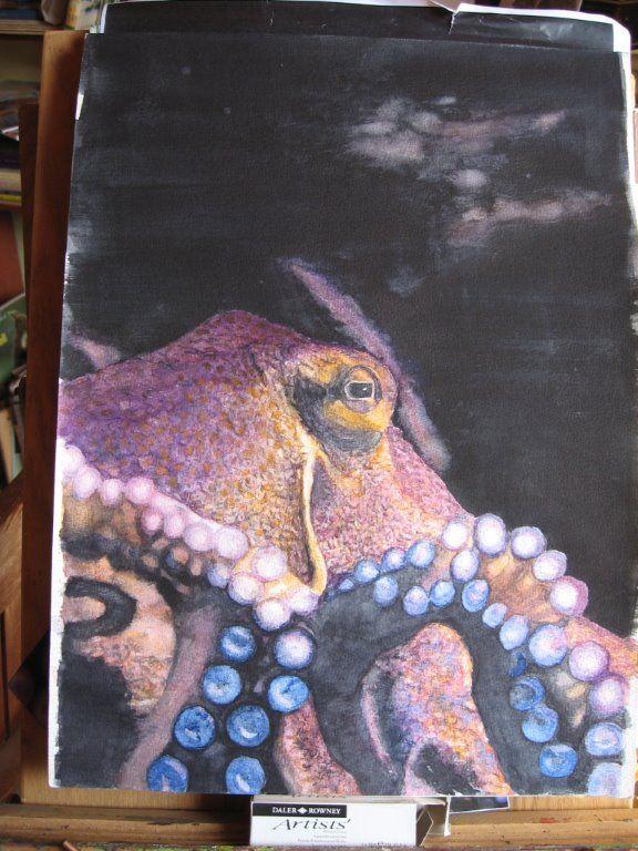 Octopus - Gayner Vlastou