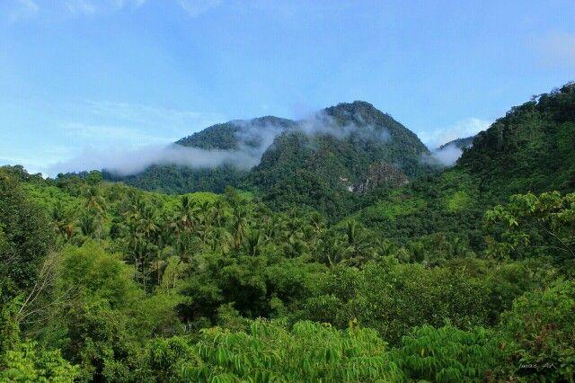 Perbukitan Tongra, Gayo Lues, Aceh, Indonesia.