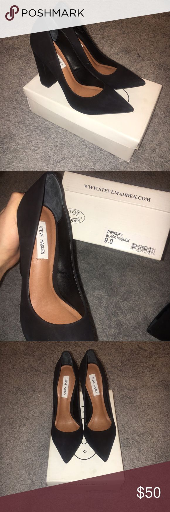 NEW Steve Madden Black Heels size 9 Steve Madden Primpy Black Nuback heels size 9 never worn! I recently sold them and had a family emergency come up and did not send the shoes out on time, I promise to send the shoes out the next day once purchased. Steve Madden Shoes Heels