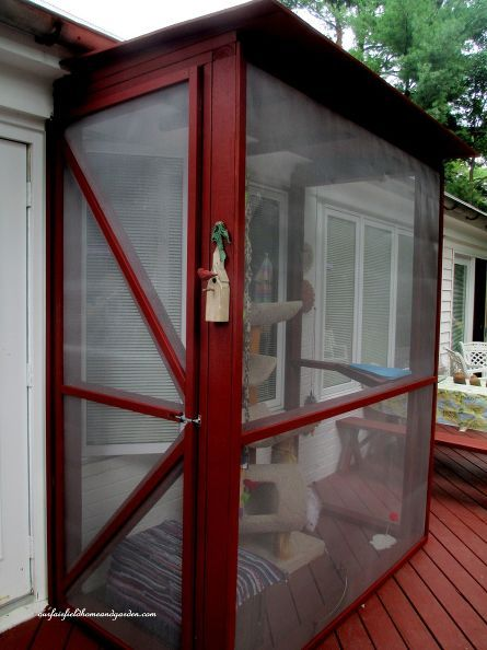 build a catio a tiny screen house for kitty cats, decks, diy, patio, pets animals, woodworking projects, The finished Catio