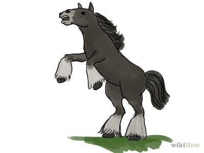 How to Draw a Horse -- via wikiHow.com
