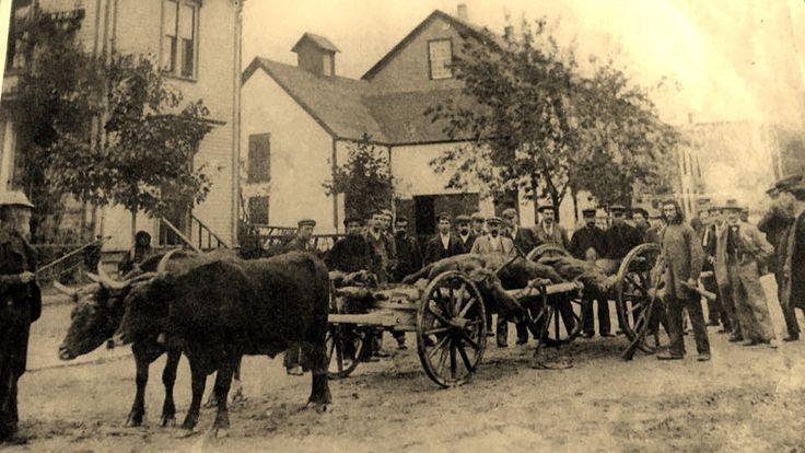 Oxen Down Town Shelburne, NS