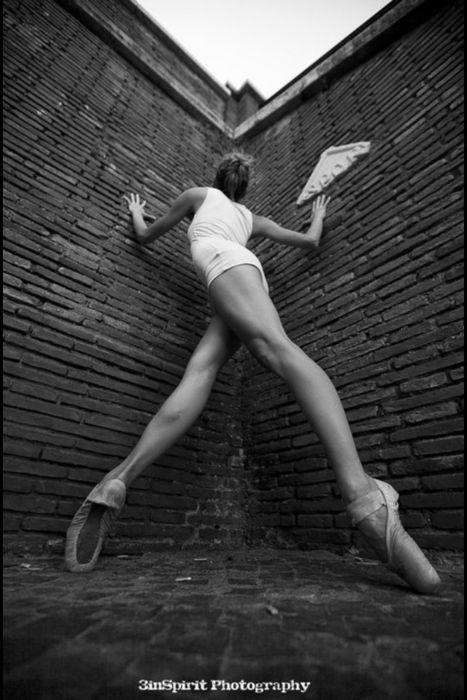 Legs.