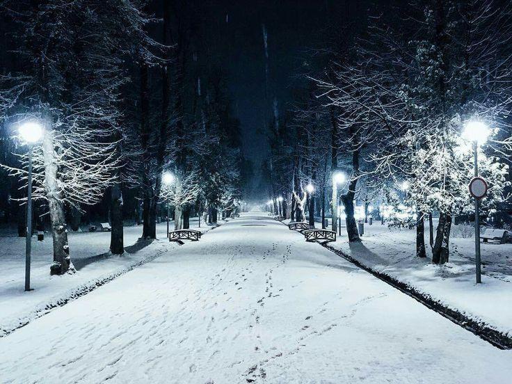 Winter in Central Park, Cluj-Napoca