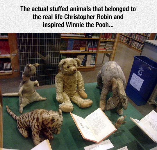 Funny Pictures: Winnie The Pooh Inspiration