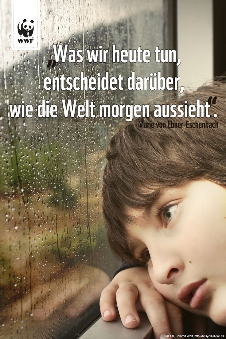 1000+ images about quotes ~ zitate on pinterest