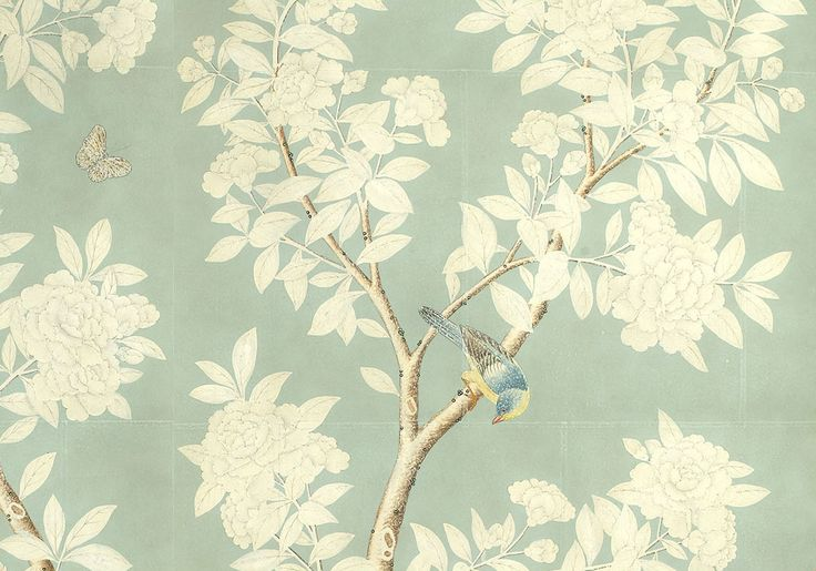 25 best ideas about gracie wallpaper on pinterest