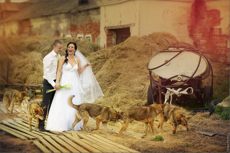 "Фото из альбома ""Ксения и Александр (3 июня 2011)"" - GoogleФото"