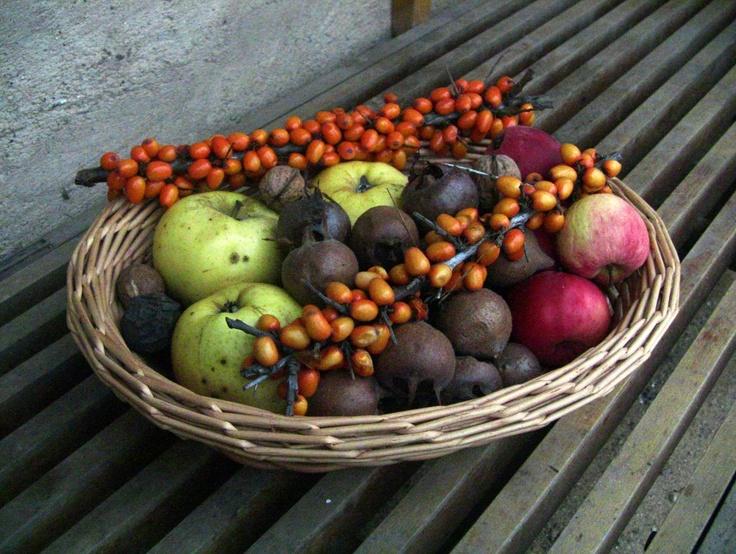 Geschickt geplant lässt sich auch im Winter aus dem eigenen Garten (und der Umgebung) gut leben - sprich essen. :D